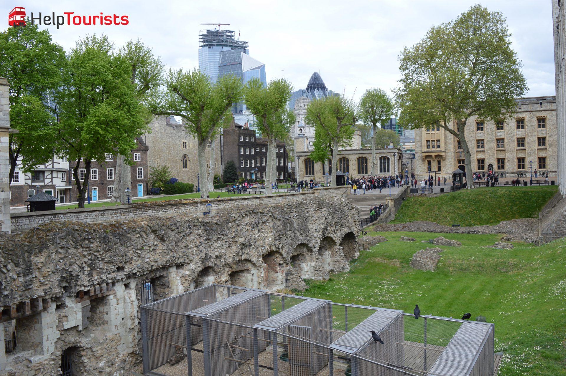 Tower of London Raben